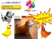 Воздушные шары - ходячие животные